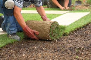 Landscaper in Idaho Falls
